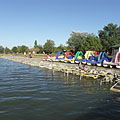 The lakeshore at the free beach - Agárd, Macaristan