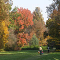 Autumn landscape in the arboretum - Szarvas, Ungaria
