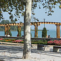 Flowers of the Rose Garden and the lake, viewed from the promenade - Balatonfüred, Hungria