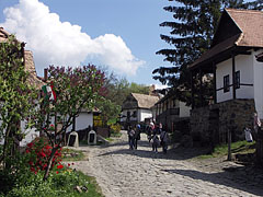 View of the World Heritage village, with spring flowers - Hollókő, Madžarska