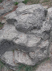 """The """"Szamárkő"""" rock that is formed by the post-volcanic activity million years ago - Zamárdi, Ungarn"""