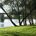 Fress green grass on the riverside free beach, as well as the Drava Bridge at Barcs - Barcs, Ungarn