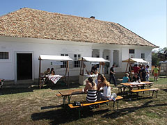 Stands of Tokaj wineries and wine tasting in the yard of the house from Nemesradnót - Szentendre, Ungarn
