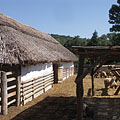 Farmstead from the Nagykunság, the fenced sheepfold for Racka sheep - Szentendre, هنغاريا