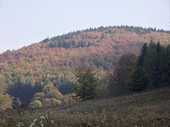 The 931-meter high Fodor Mountain, as seen from the Huta Meadow - Bánkút, Hungary