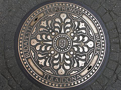 The ornamental manhole cover of the electricity company - Budapest, Hungary