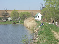 Anglers on the shore of the Sinkár Lake - Csővár, Hungary