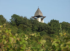 Lookout tower on Gyertyános Hill - Mogyoród, Hungary