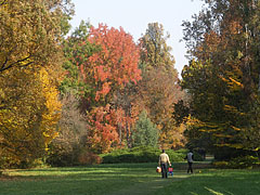 Autumn landscape in the arboretum - Szarvas, Hungary
